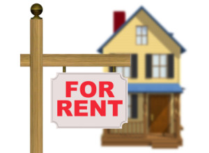 How to look for the perfect rental property management?